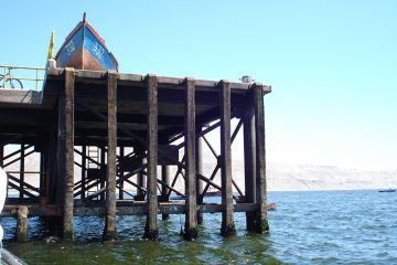 Dock Timbers