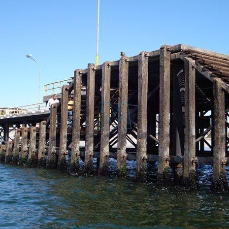 Dock Timber 1