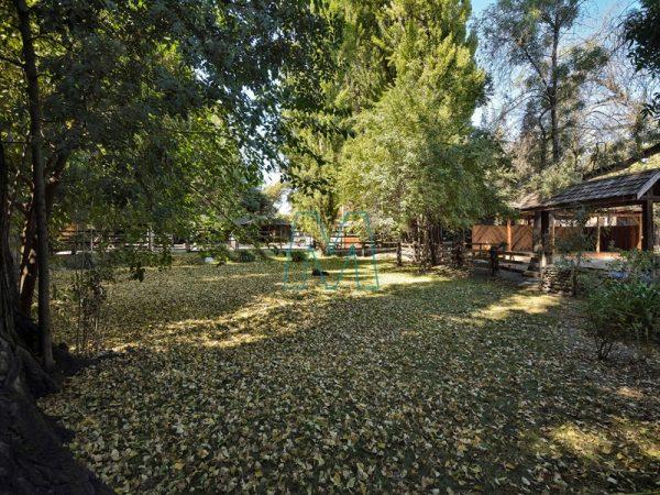 Facilities garden